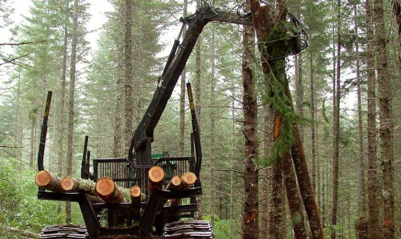 CALLS NEEDED NOW:  To Keep Dangerous Logging Provisions out of the Farm Bill