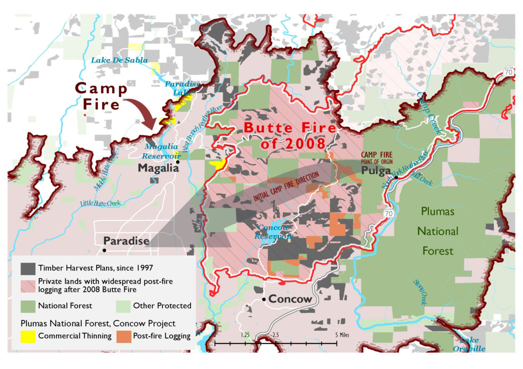Map showing the boundary of the Camp Fire, the direction the fire burned and the extensive amount of logging and habitat removal that occurred between the fire's origin and the towns of Paradise, Magalia and Concow which did not stop the fire.